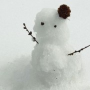 初めての雪おろし