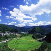 和歌山で暮らそう